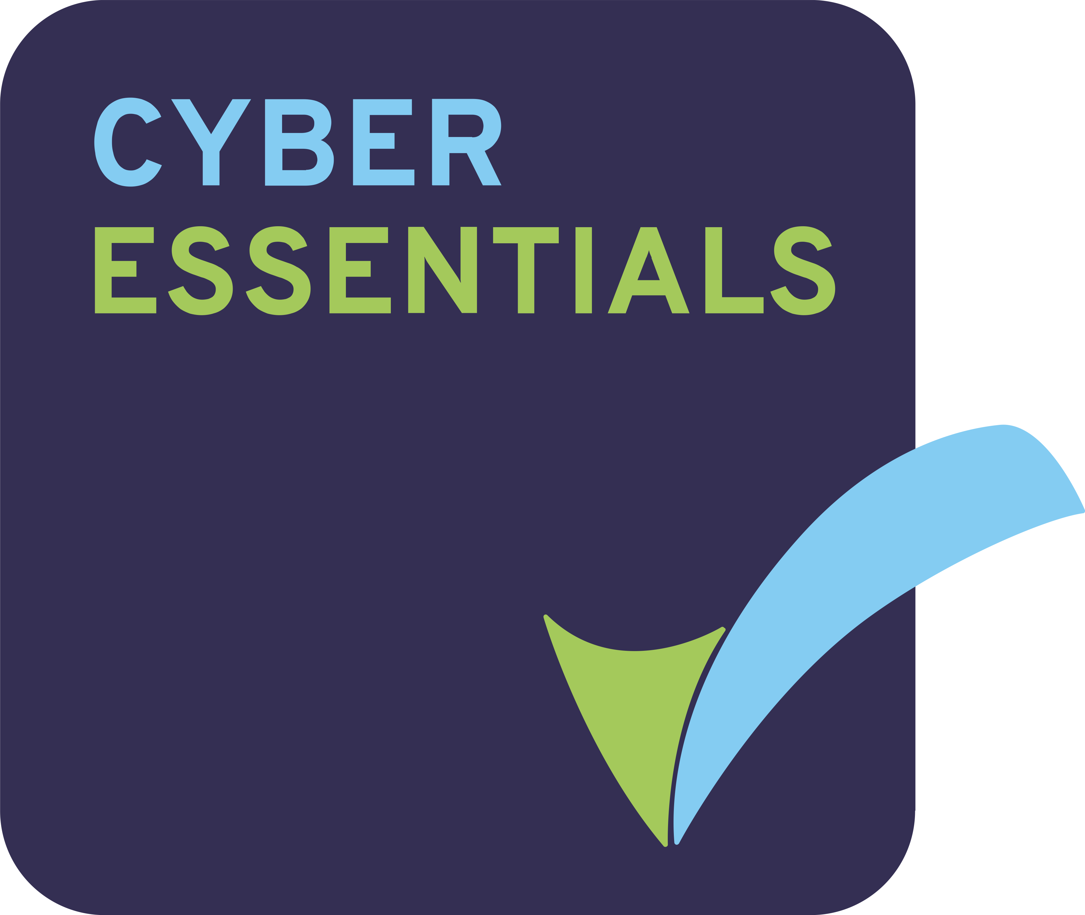 cyber-essentials-badge-high-res